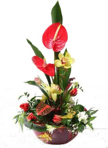 заказать розы гран при срочная доставка краснодар